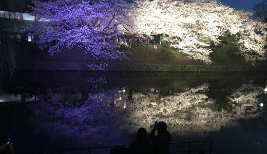 舞鶴公園サイコー!